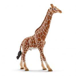 Schleich Zvieratko - samec žirafy