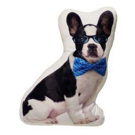 My Best Home Vankúšik Animal - Pes s okuliarmi