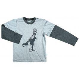 MMDadak Chlapčenské tričko s dinosaurom - šedé