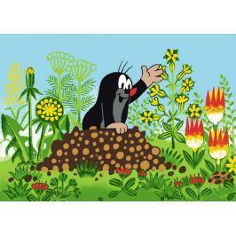 Vopi Detský koberec Krtko a kvety, 95x133 cm - farebný
