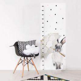 Dekornik Samolepka na stenu - detský meter Králik, 160x60 cm