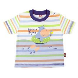 2be3 Chlapčenské prúžkované tričko Hipo - farebné