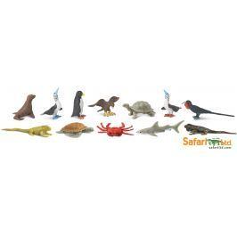 Safari LTD Tuba - Zvieratá z Galapág