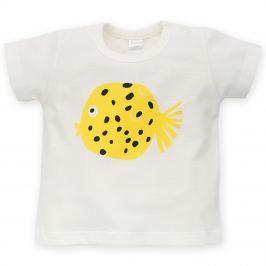 Pinokio Chlapčenské tričko Little Fish