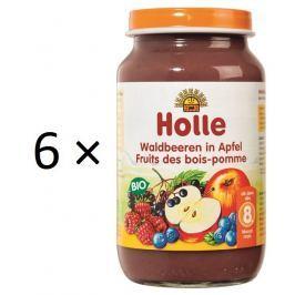 Holle BIO lesné plody v jablku 6x220g
