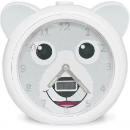 Zazu Medvedík BOBBY - tréningový budík