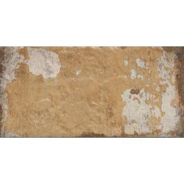Dlažba Cir Havana tropicana 10x20 cm mat HAV12TR