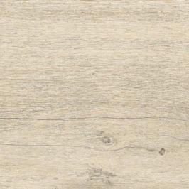 Dlažba Rako Saloon béžová 20x20 cm mat DAK26746.1