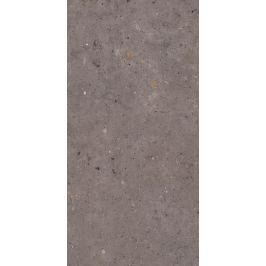 Dlažba Pastorelli Biophilic dark grey 60x120 cm mat P009416