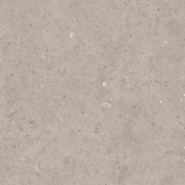 Dlažba Pastorelli Biophilic grey 80x80 cm mat P009419