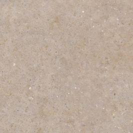 Dlažba Pastorelli Biophilic Greig 120x120 cm mat P009413