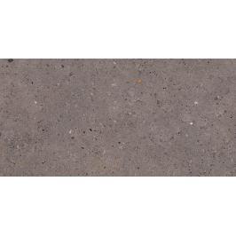 Dlažba Pastorelli Biophilic dark grey 30x60 cm mat P009501