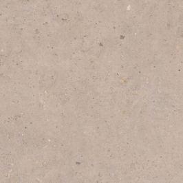 Dlažba Pastorelli Biophilic Greig 80x80 cm mat P009421