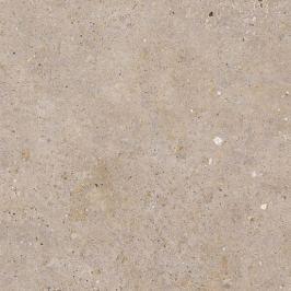 Dlažba Pastorelli Biophilic Greig 60x60 cm mat P009498