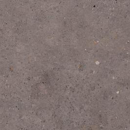 Dlažba Pastorelli Biophilic dark grey 60x60 cm mat P009497