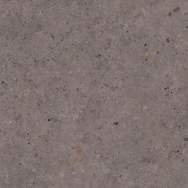 Dlažba Pastorelli Biophilic dark grey 80x80 cm mat P009420