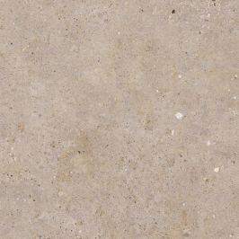 Dlažba Pastorelli Biophilic Greig 60x60 cm protisklz P009506