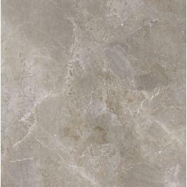 Dlažba Porcelaingres Royal Stone paládium grey 100x100 cm mat X1010382X6
