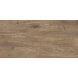 Dlažba Fineza Alpina brown 30x60 cm mat ALPINA36BR