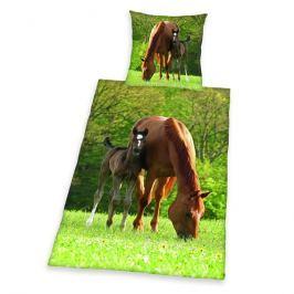 Herding Herding obliečky Kôň 140x200, 70x90