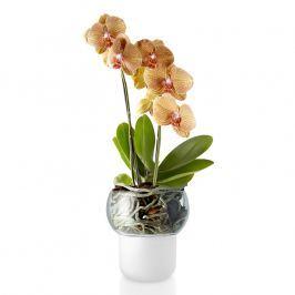 Eva Solo Sklenený samozavlažovací kvetináč na orchidey Ø 13 cm