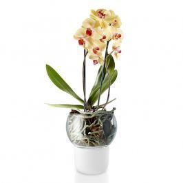 Eva Solo Sklenený samozavlažovací kvetináč na orchidey Ø 15 cm