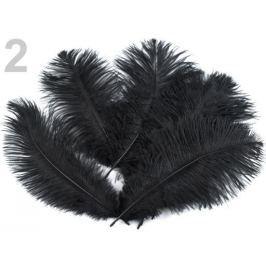 Pštrosie perie dĺžka 20 cm čierna 30ks Stoklasa