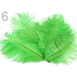 Pštrosie perie dĺžka 20 cm zelená sv. 80ks Stoklasa