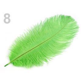 Pštrosie perie dĺžka cca 20-25 cm zelená elektrická 30ks Stoklasa