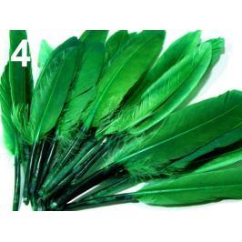 Kačacie perie dĺžka 9-14 cm zelená 1sáčok Stoklasa