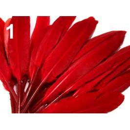 Kačacie perie dĺžka 9-14 cm červená 10sáčok Stoklasa
