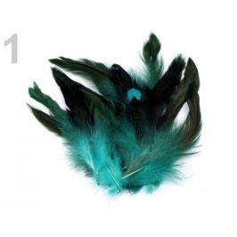 Slepačie perie dĺžka  6-15 cm tyrkys sv. 20ks Stoklasa