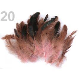 Slepačie perie dĺžka  6-15 cm ružová str. 20ks Stoklasa