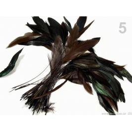 Kohútie perie dĺžka 13-18 cm kávová 50ks Stoklasa