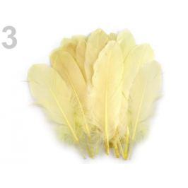 Husacie perie dĺžka 15-21 cm bielo žltá 5ks Stoklasa