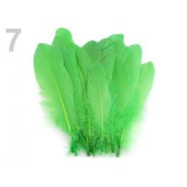 Husacie perie dĺžka 15-21 cm zelená sv. 5ks Stoklasa