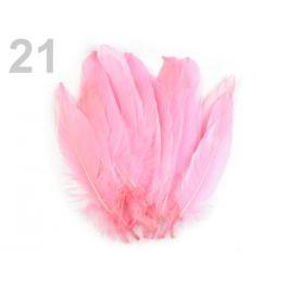 Husacie perie dĺžka 15-21 cm bordó sv. 5ks Stoklasa