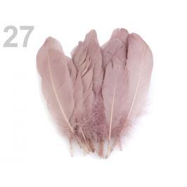 Husacie perie dĺžka 15-21 cm béžová sv. 5ks Stoklasa