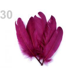 Husacie perie dĺžka 15-21 cm marhulová 5ks Stoklasa