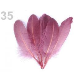 Husacie perie dĺžka 15-21 cm béžová 5ks Stoklasa