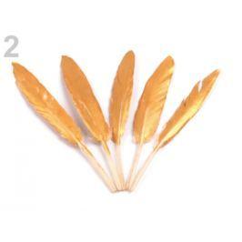 Kačacie perie dĺžka 10,5-14,5 cm zlatá 20ks Stoklasa