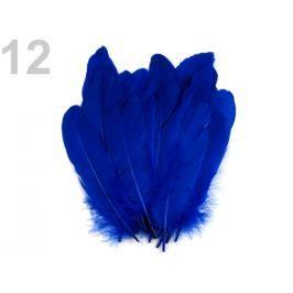 Husacie perie dĺžka 15-21 cm modrá kobaltová 5ks Stoklasa
