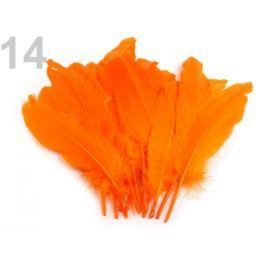 Husacie perie dĺžka 15-21 cm oranžová   5ks Stoklasa