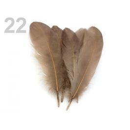 Husacie perie dĺžka 15-21 cm hnedá sv. 5ks Stoklasa