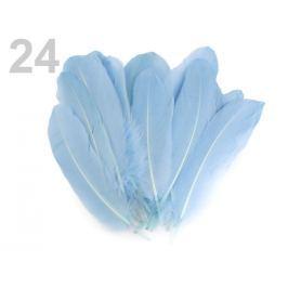 Husacie perie dĺžka 15-21 cm modrá nezábudková 5ks Stoklasa