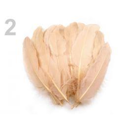 Husacie perie dĺžka 15-21 cm ecru 20ks Stoklasa