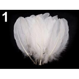 Husacie perie dĺžka 15-21 cm biela 20ks Stoklasa