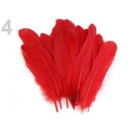 Husacie perie dĺžka 15-21 cm červená 20ks Stoklasa