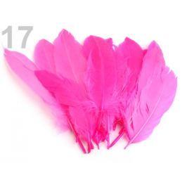 Husacie perie dĺžka 15-21 cm ružová ostrá sv. 20ks Stoklasa