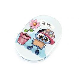 Kozmetické zrkadielko sova s veľkými očami modrá ľadová 1ks Stoklasa